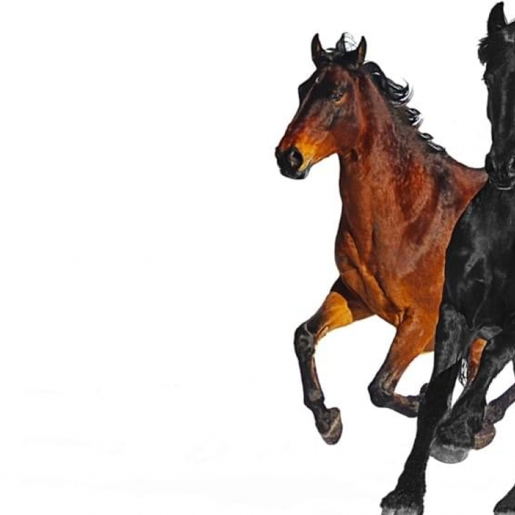 Old Town Road dan Kebangkitan Genre Country Rap