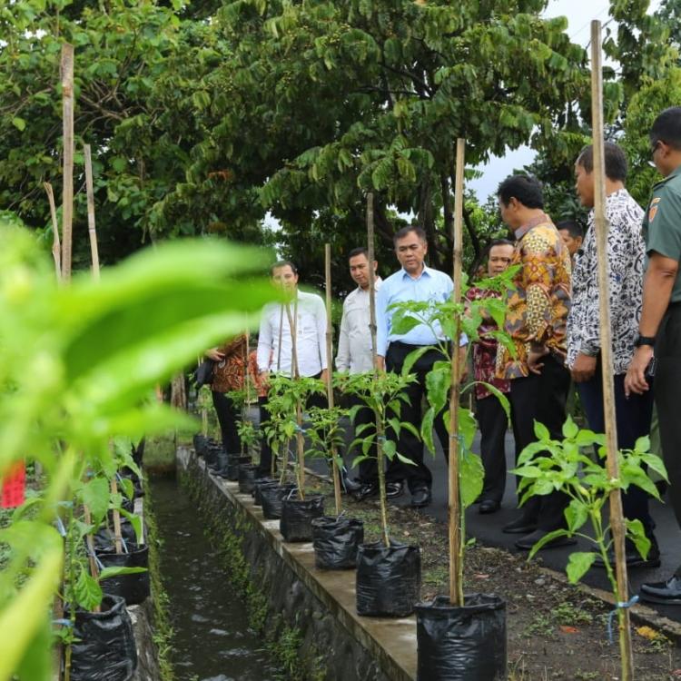 Kementerian Pertanian Bangga Bisa Turunkan Kemiskinan