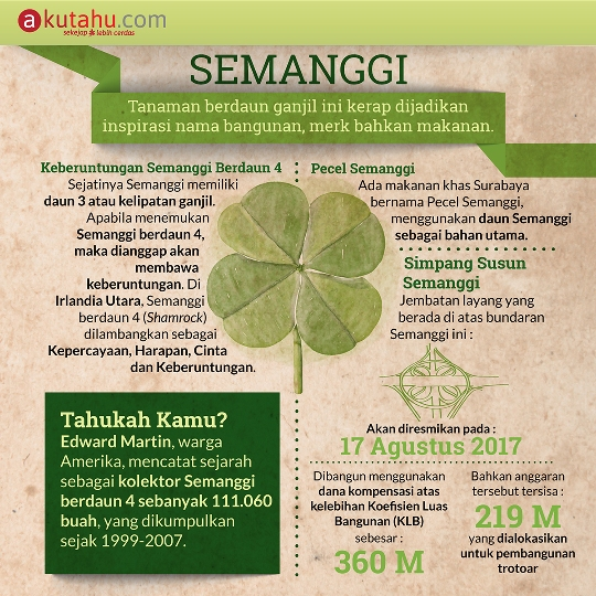 Semanggi