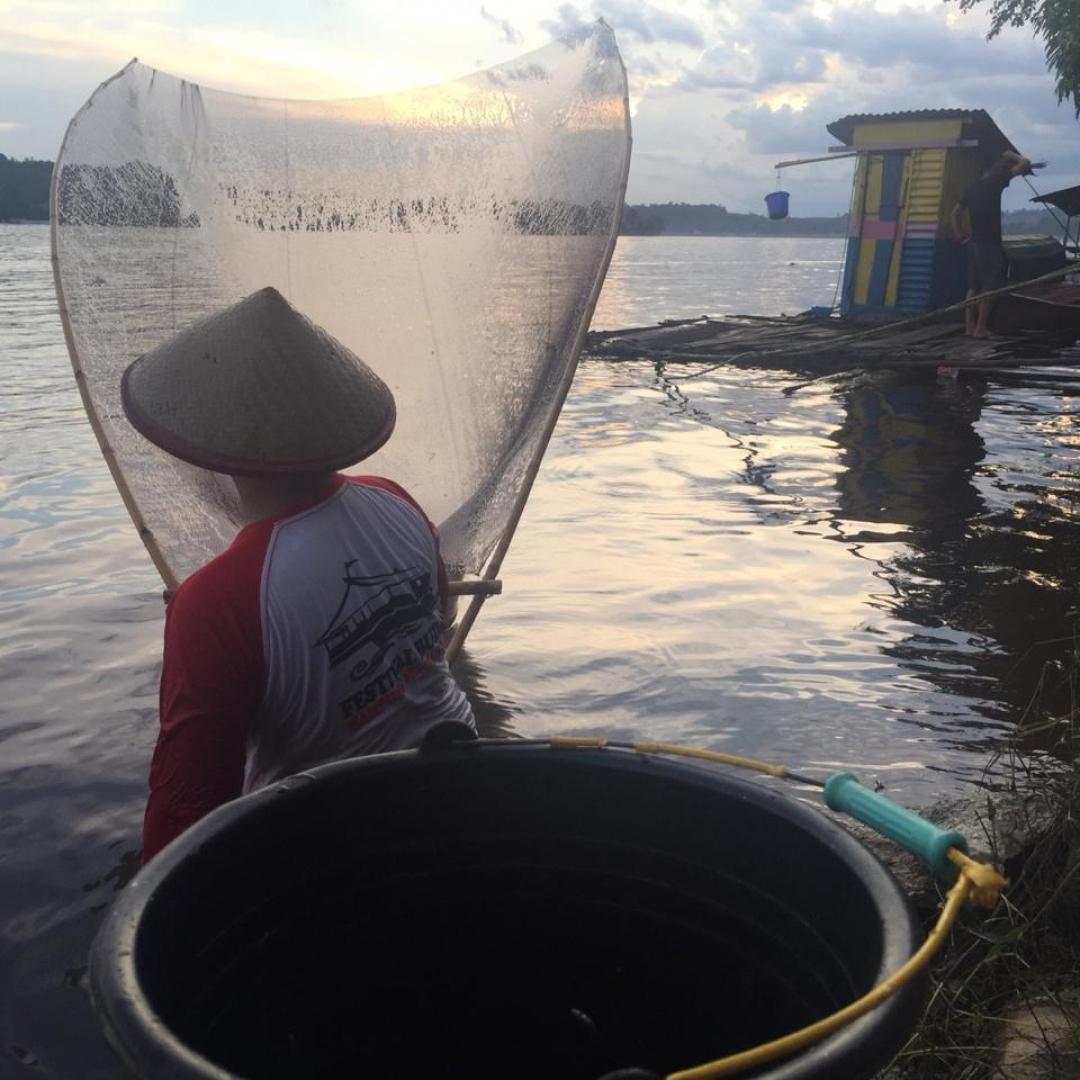 Tradisi Unik Memancing Ikan di Sanggau