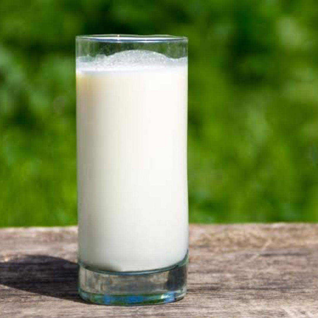 Usia Produktif Masih Butuh Susu