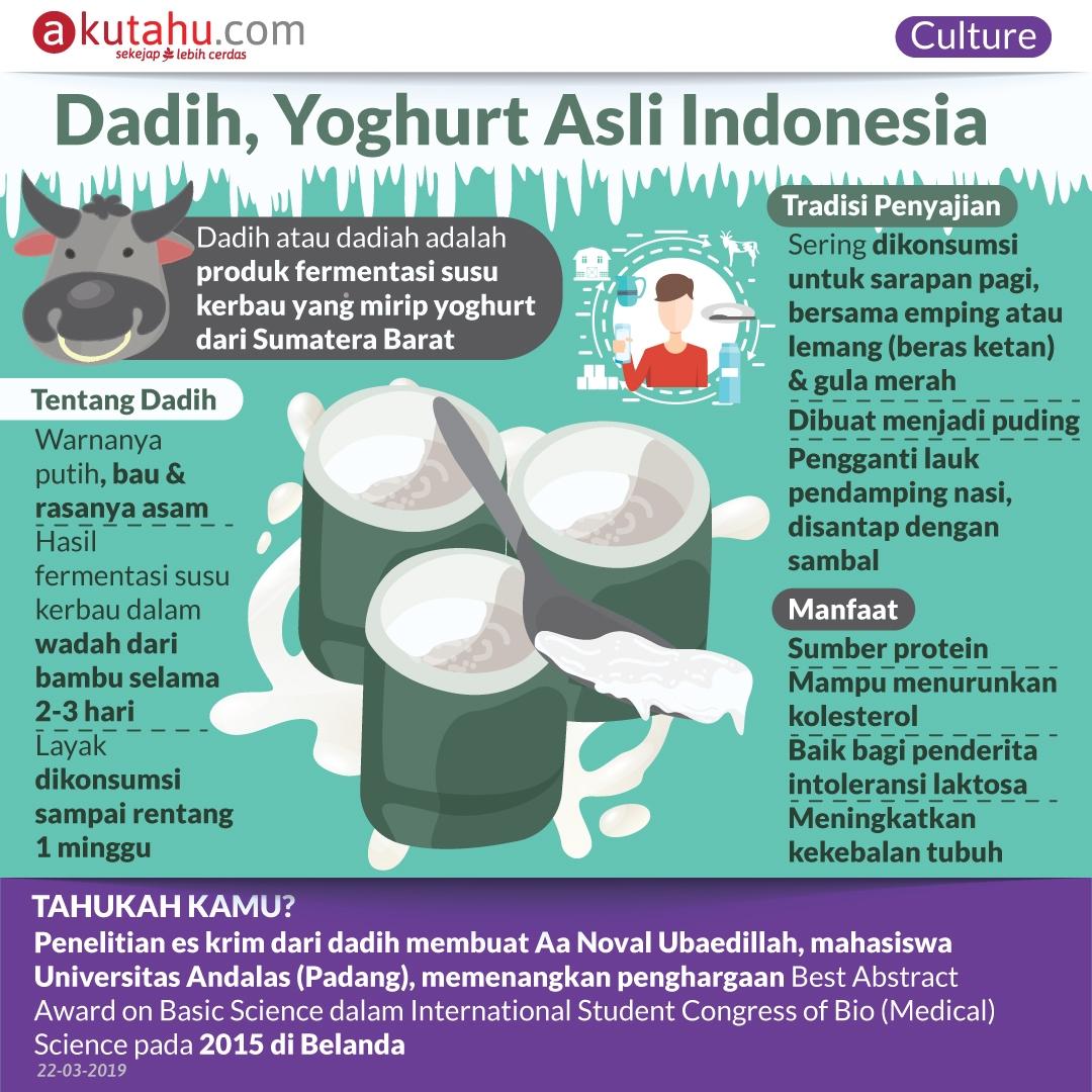 Dadih, Yoghurt Asli Indonesia