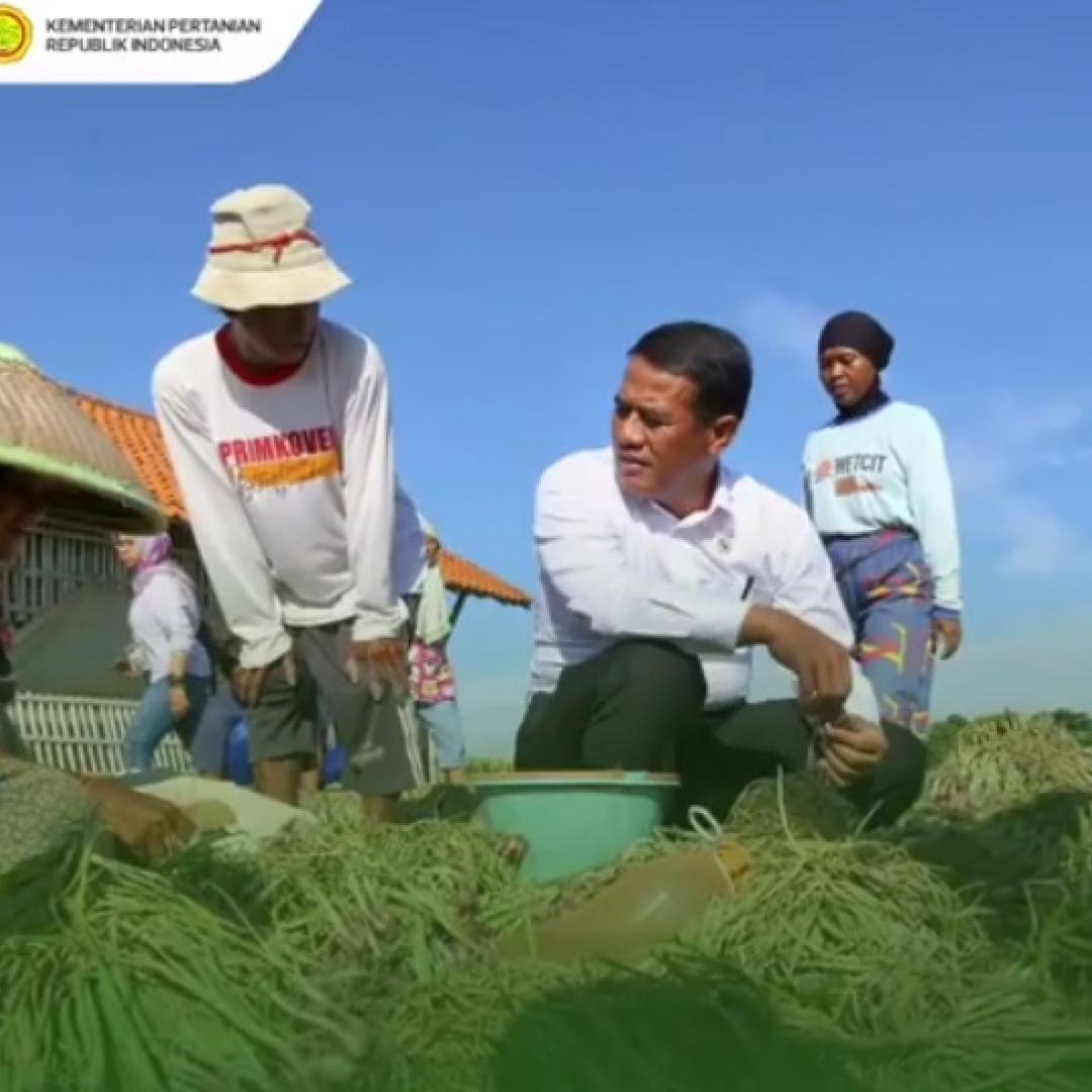 Kesejahteraan Petani di Indonesia Masih Bisa Ditingkatkan