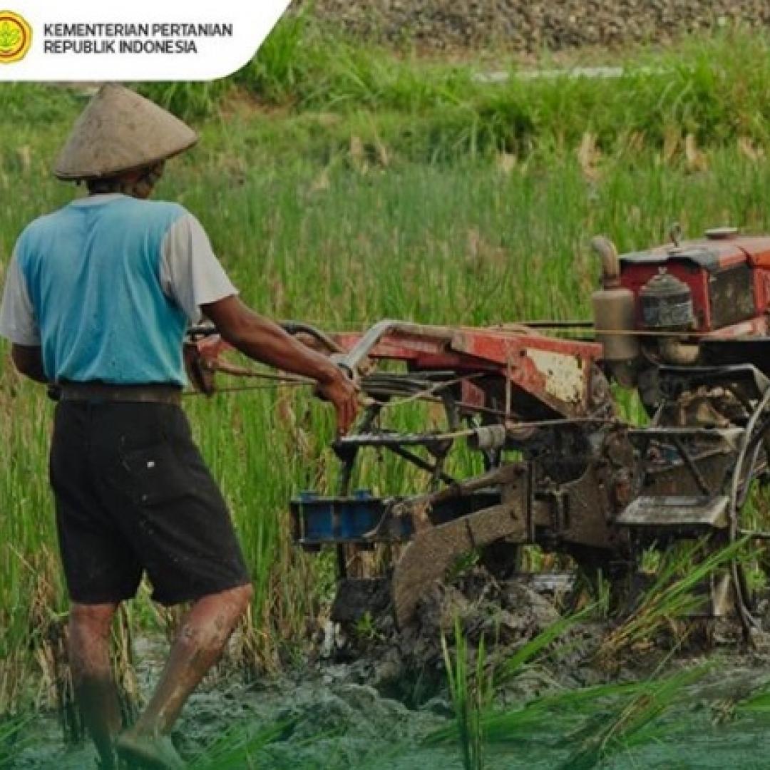 Di Program Serasi, TNI AD Ternyata Secara Aktif Membantu Petani
