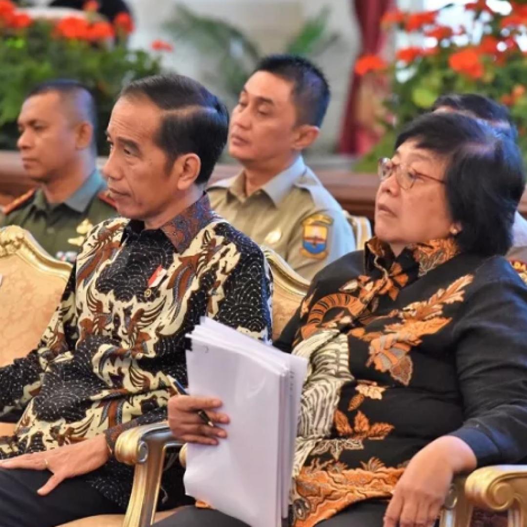 Presiden Menginstruksikan BRG Meneruskan Pembangunan Sekat Kanal