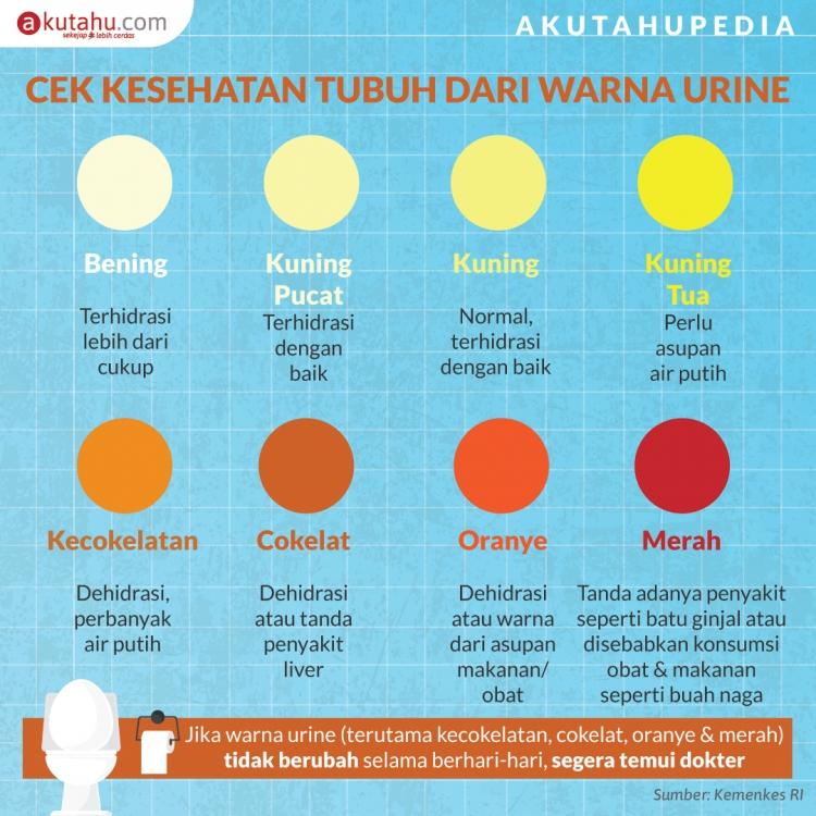 Cek Kesehatan Tubuh dari Warna Urine