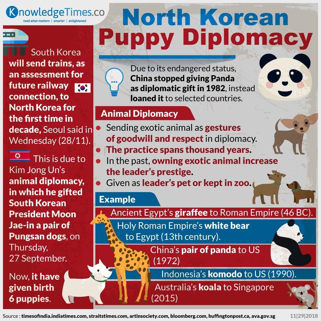 North Korean Puppy Diplomacy