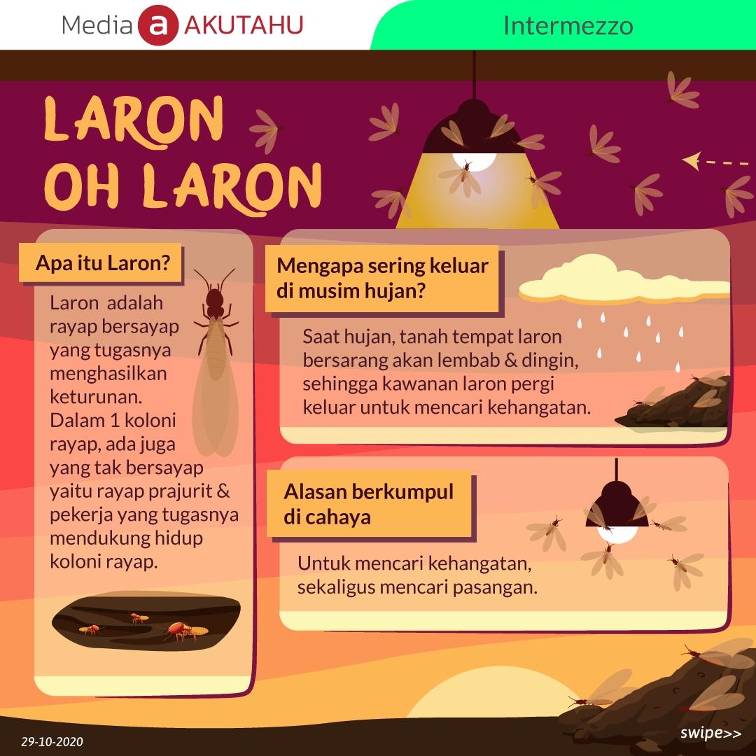 Laron Oh Laron