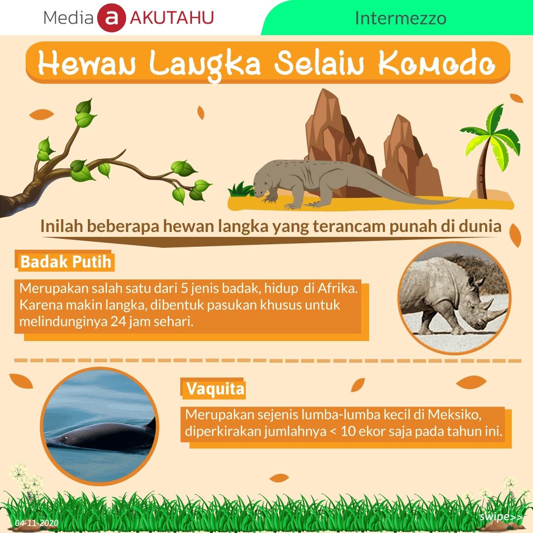 Hewan Langka Selain Komodo