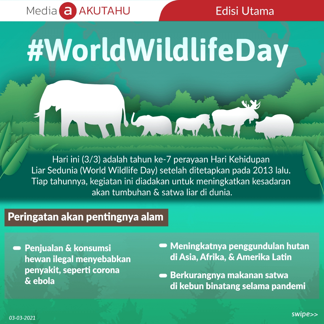 #WorldWildlifeDay