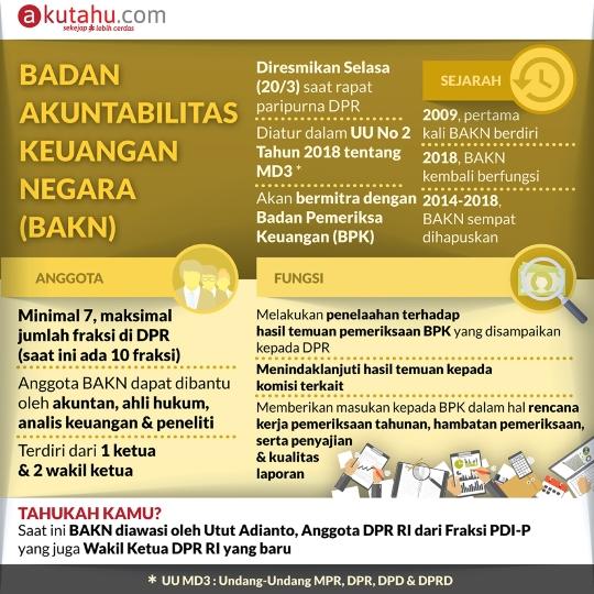 Badan Akuntabilitas Keuangan Negara (BAKN)